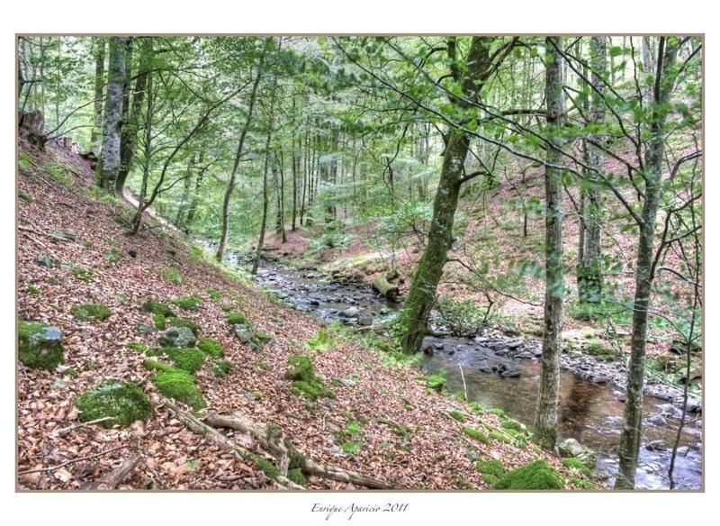reflejo en el rio11