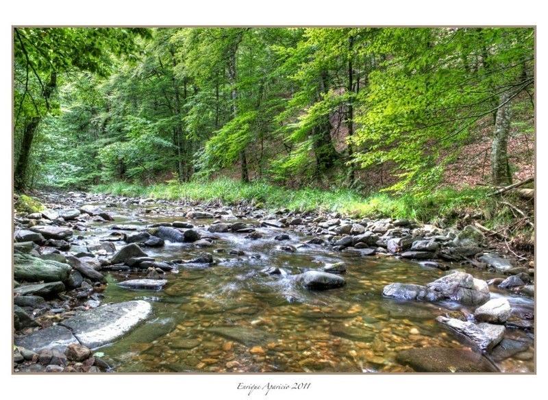 reflejo en el rio12