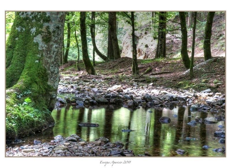 reflejo en el rio6