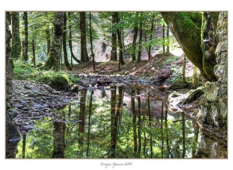 reflejo en el rio7