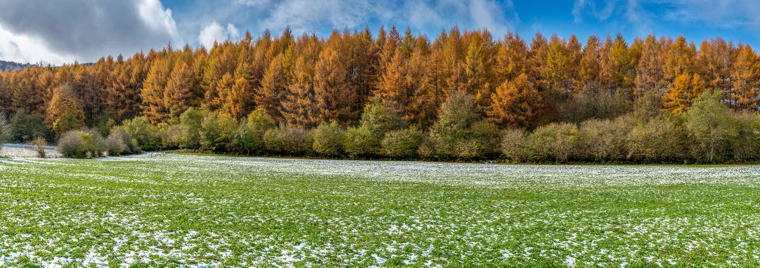 paisaje otoñal con nieve