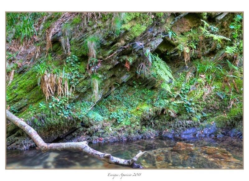reflejo en el rio5