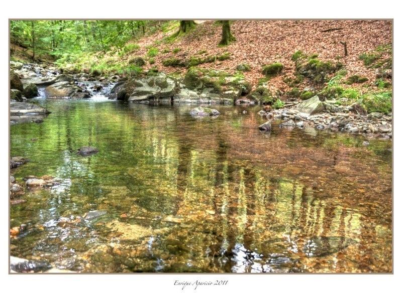 reflejo en el rio9